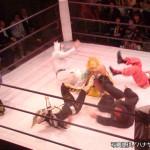 2014-10-24ハナヤシキプロレスリング