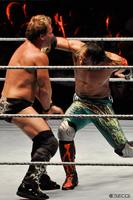 100820_WWE-2.jpg