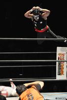 110528_NJPW-1.jpg