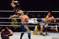 120809_WWE-3.jpg