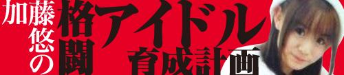 Column_Kato.jpg